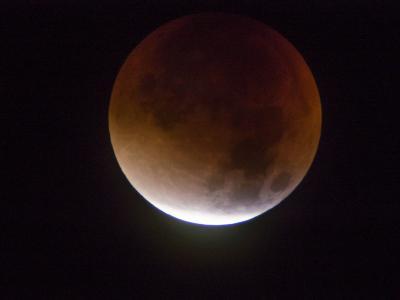 L'eclissi con la luna rossa emoziona il mondo. Le foto riprese dal Carso triestino
